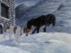 the-plague-dogs-250.jpg