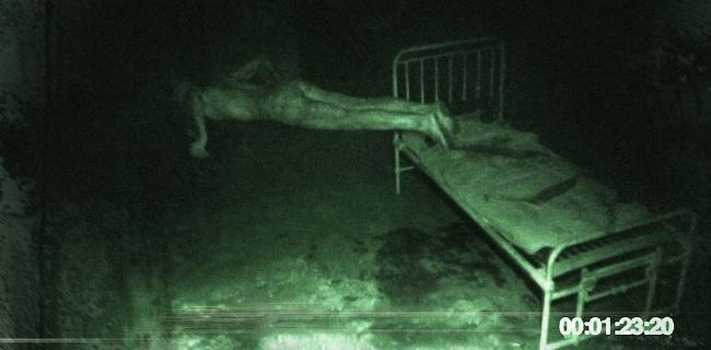 celluloid screams 2012_entity.jpg