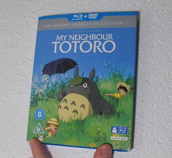 MyNeighbourTotoro-ext3.jpg
