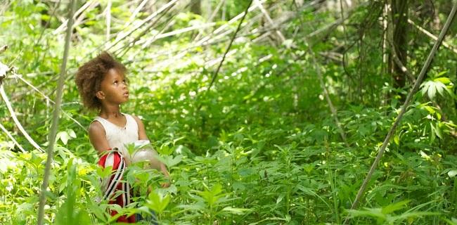 matthew lee_top 10 2012_beasts of the southern wild.jpg