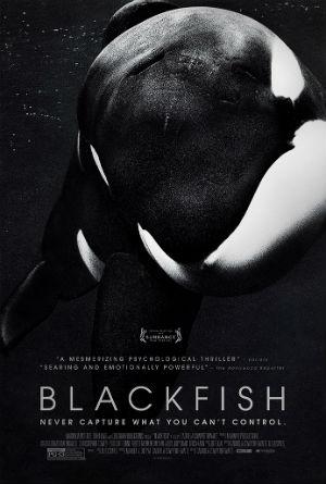 blackfish-poster-300.jpg