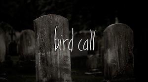 indie_beat_bird_call.jpg