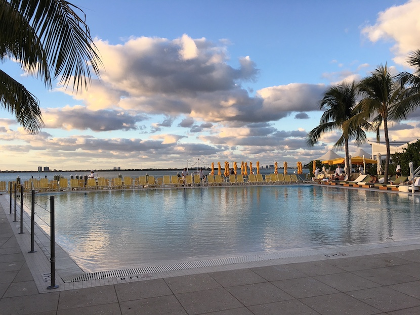 Miami Standard pool.jpg