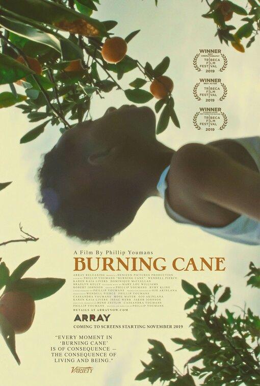 burning_cane_FRIDAYONESHEET.jpg
