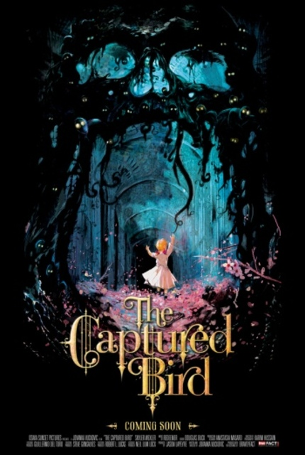 DVD Review: THE CAPTURED BIRD Special Edition