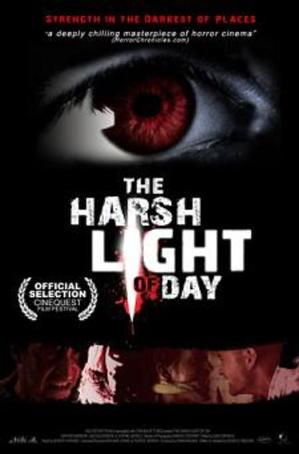 Review: THE HARSH LIGHT OF DAY