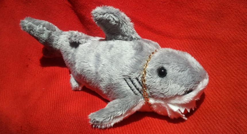 SyFy: JERSEY SHORE SHARK ATTACK, PIRANHACONDA, ARACHNOQUAKE and BIGFOOT!