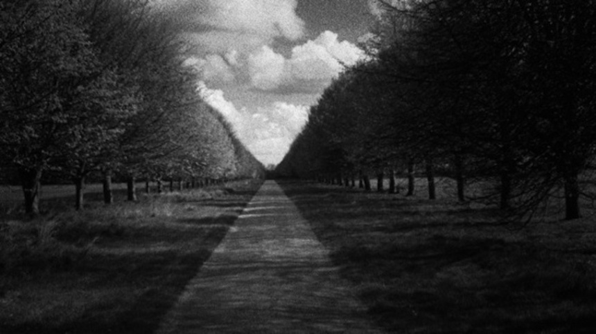NYFF 2011: Patience (After Sebald) Review