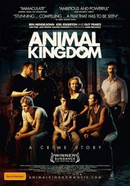 ANIMAL KINGDOM UK BluRay review