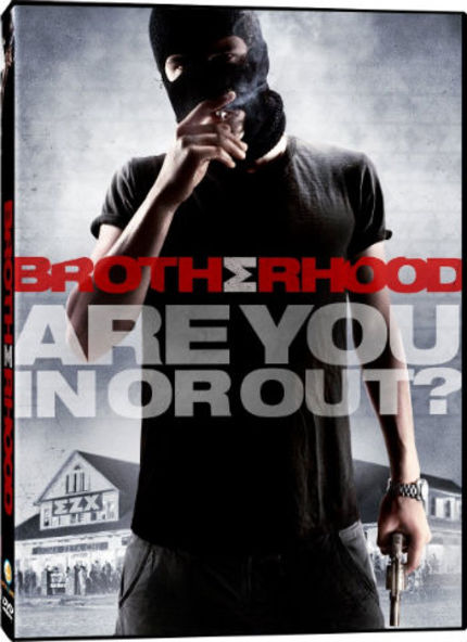 BROTHERHOOD DVD Review