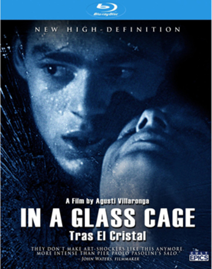 IN A GLASS CAGE Blu-ray Review