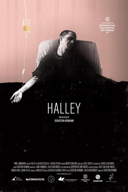 Mexico's HALLEY Brings The Undead To The Arthouse