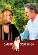05. Darling Companion.jpg
