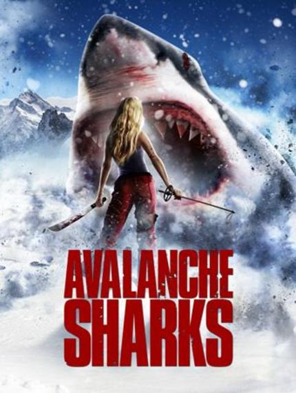 Oh, No! AVALANCHE SHARKS!