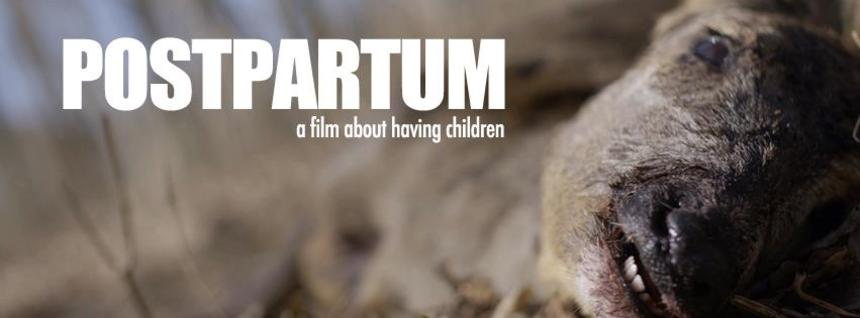 Shudder With The First Teaser For Danish Horror POSTPARTUM