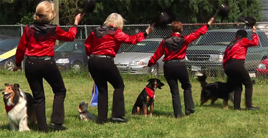 Watch The Trailer For UNLEASHED, the Dog Dancin', Kite Flyin' Documentary