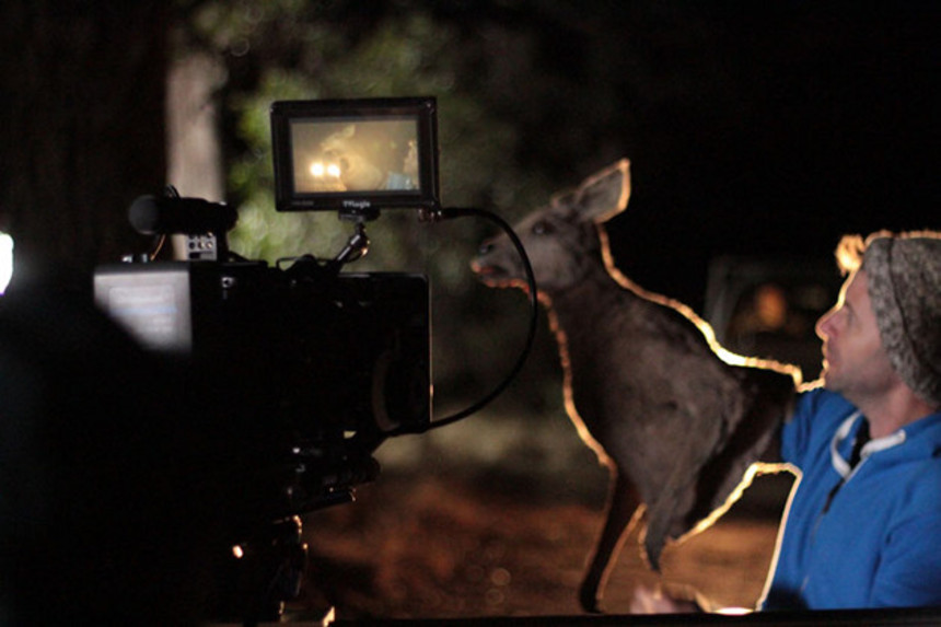 See The Zombie Kangaroo In Action In A Behind The Scenes Clip From WATERBORNE