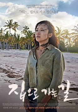 2013 - The Way Home (Poster).jpg