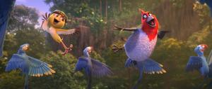 RIO 2-MOVIE.jpg
