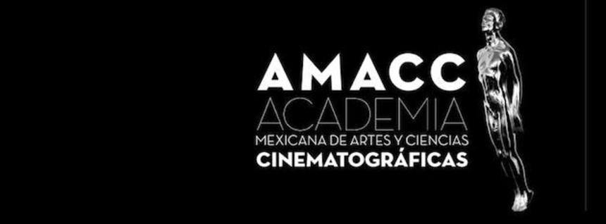 Ariel Awards 2014: THE GOLDEN CAGE Dominates Mexican Oscars