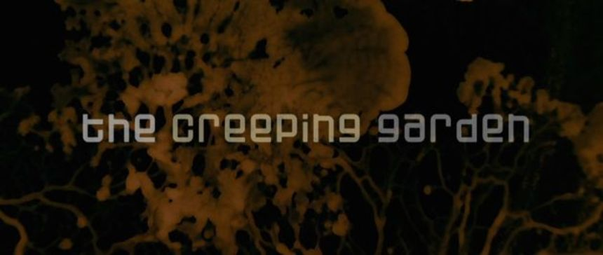 New Trailer For Science Doc THE CREEPING GARDEN Explores Slime Mould, But Not As We Know It!