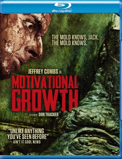 MOTIVATIONAL GROWTH: New Trailers To Mark Release Of Don Thacker's Indie