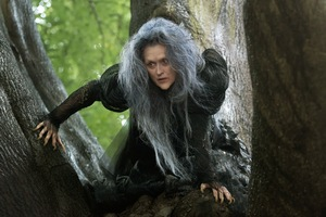 Into-the-Woods-Movie-Meryl-Streep-as-the-Witch.jpg