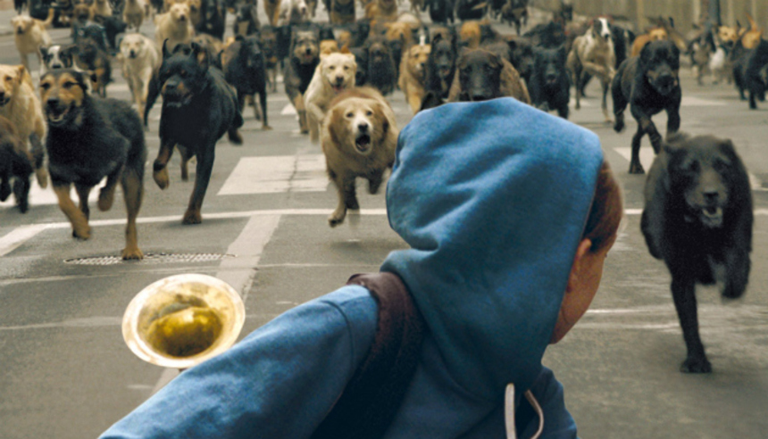 Review: WHITE GOD, When Dogs Inherit The Earth