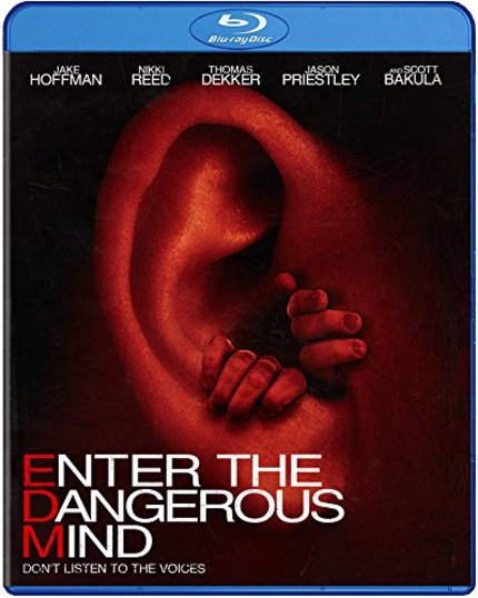 Win ENTER THE DANGEROUS MIND On Blu-ray From ScreenAnarchy And Well Go USA