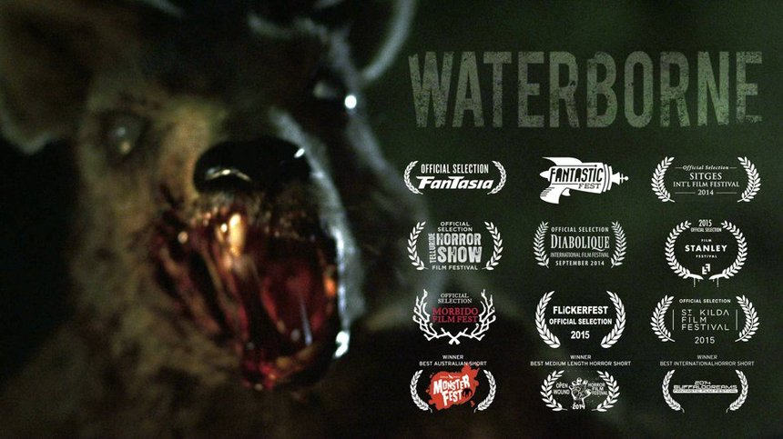 Beware The Coming Of The Zombie-roo! Australian Short WATERBORNE Online Now!