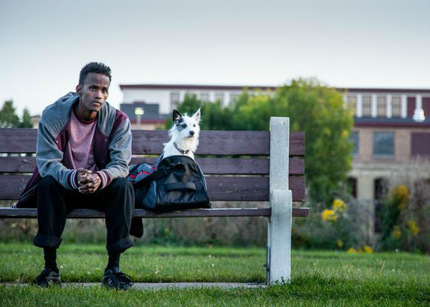 SXSW 2016 Review: In A STRAY, Refugees Are Not Left Behind