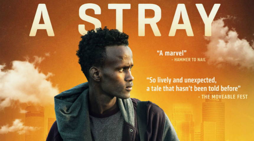A STRAY: See New Poster, Watch New Trailer, Make Plans for Release