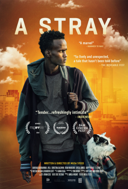 Review: A STRAY Refuses To Be Left Behind