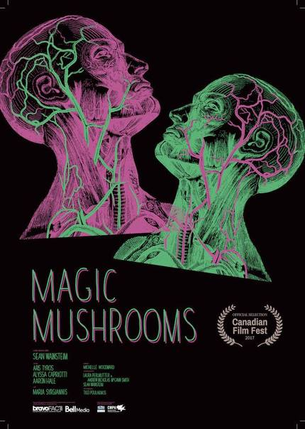 Watch Trippy Relationship Comedy MAGIC MUSHROOMS