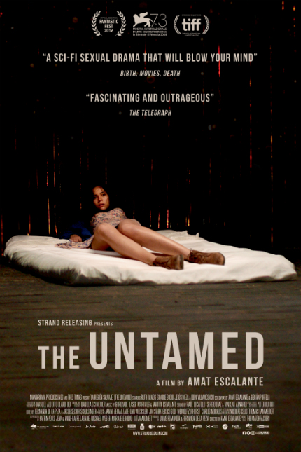 Review: THE UNTAMED, Riveting and Shocking, It Needs to Be Watched to Be Believed