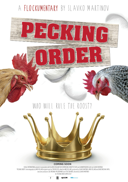 PECKING ORDER Trailer: Chickens Are Silly, But So Are People