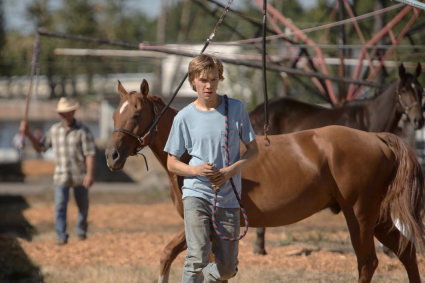 Venice 2017 Review: LEAN ON PETE, The Greatest Tragedy Of The Biennale So Far
