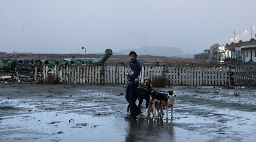 Cannes 2018 Review: DOGMAN, Homo Homini Canis