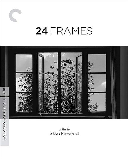 Blu-ray Review: 24 FRAMES Mischievously, Compellingly Lulls to the End of Abbas Kiarostami's Life, Career