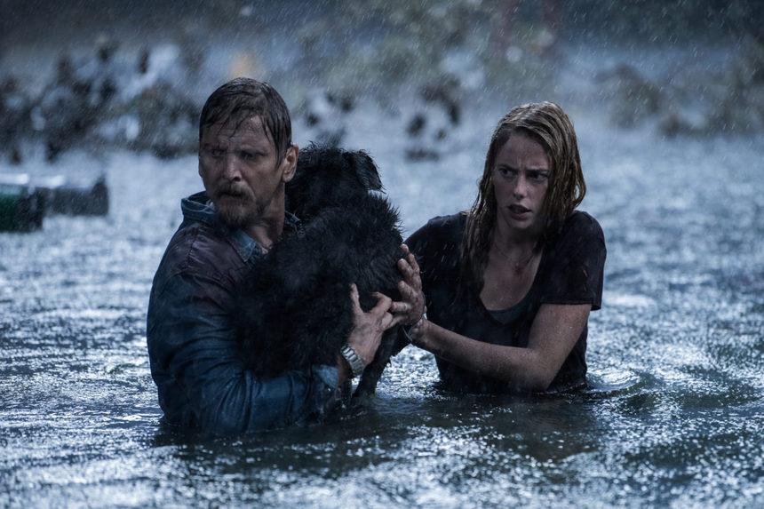 CRAWL Trailer: Alexandre Aja Wades Into Dangerous Waters