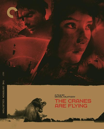 Blu-ray Review: THE CRANES ARE FLYING Takes Off as Criterion Blu-ray Upgrade