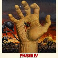 Phase Iv Stream