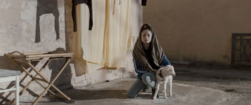 Febiofest Prague 2020 Review: THE LAMB, Italian Family Drama in Contaminated Sardinia
