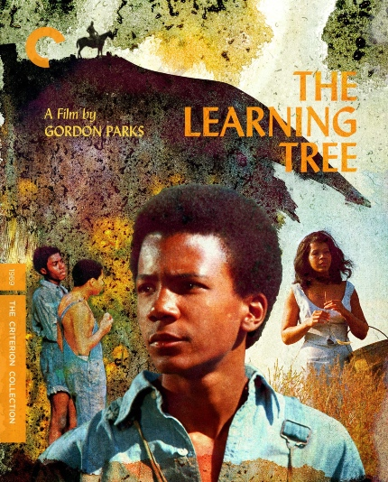 Criterion in December 2021: ONE NIGHT IN MIAMI, THE LEARNING TREE, THE RED SHOES